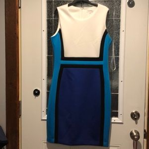 Sleeveless Dress for a night out or the office.